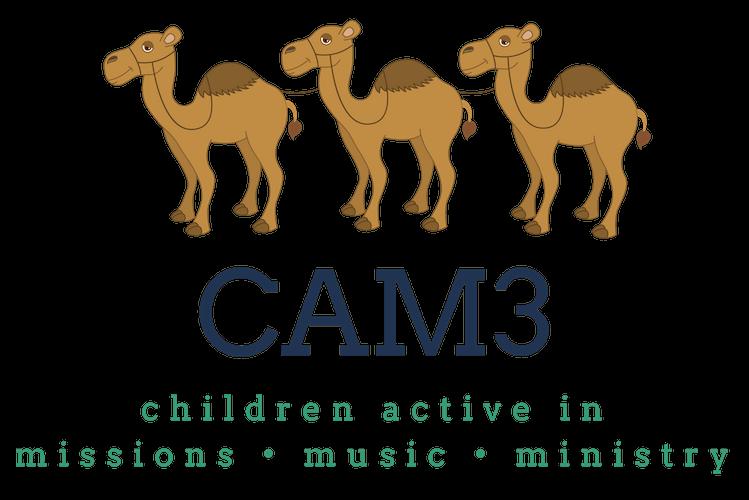 CAM3 Logo